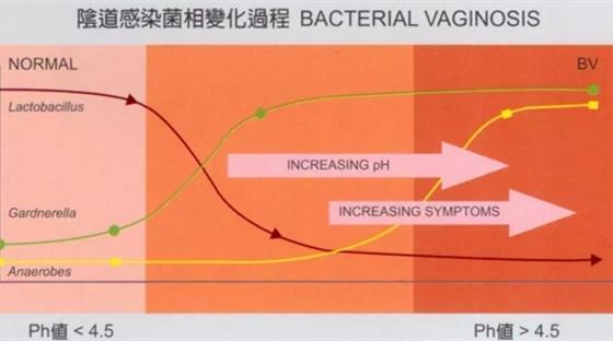 妇科炎症反复不愈,可能由于阴道菌群失衡?