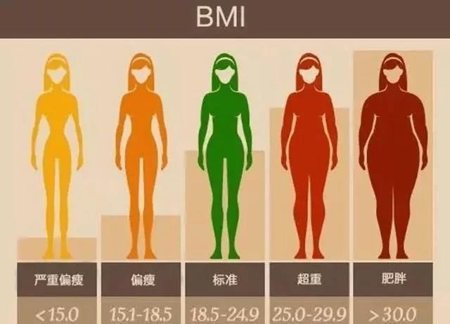 女性BMI指数
